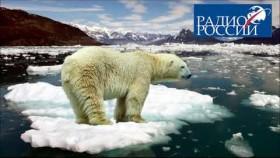 Пластик добрался до Арктики: обсуждаем с инженером-экологом Иваном Калининым