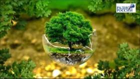Тренд экологического активизма обсуждаем в эфире Радио России с экологом-экспертом Иваном Калининым