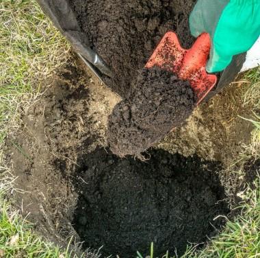 Микробиологический анализ почвы (грунта, донных отложений) Фотоматериалы нашей работы Фото №3