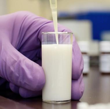 Микробиологический анализ продуктов питания Фотоматериалы нашей работы Фото №1