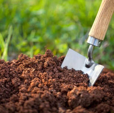 Микробиологический анализ почвы (грунта, донных отложений) Фотоматериалы нашей работы Фото №2