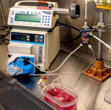 Химический анализ воздуха Фотоматериалы нашей работы Фото №2