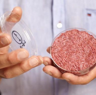 Микробиологический анализ продуктов питания Фотоматериалы нашей работы Фото №4