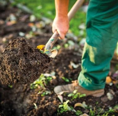 Микробиологический анализ почвы (грунта, донных отложений) Фотоматериалы нашей работы Фото №5