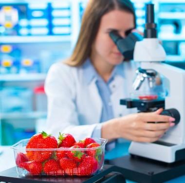 Химический анализ продуктов питания Фотоматериалы нашей работы Фото №5