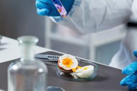 Химический анализ продуктов питания