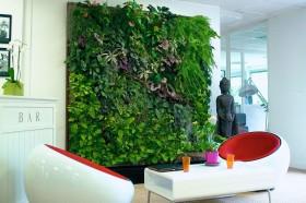 Комплексное экологическое обследование офисов фото