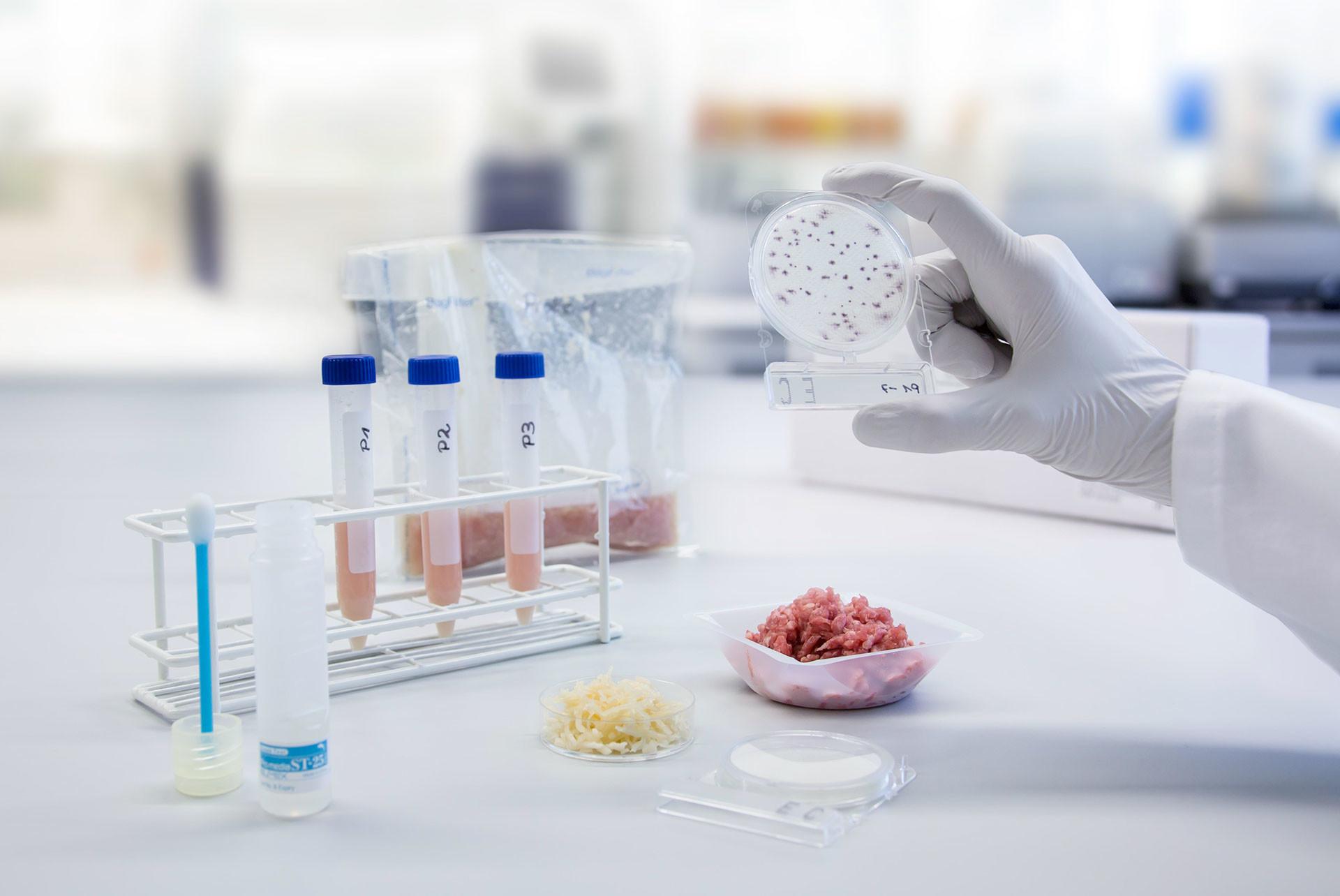 Особенности микробиологического анализа продуктов питания фото