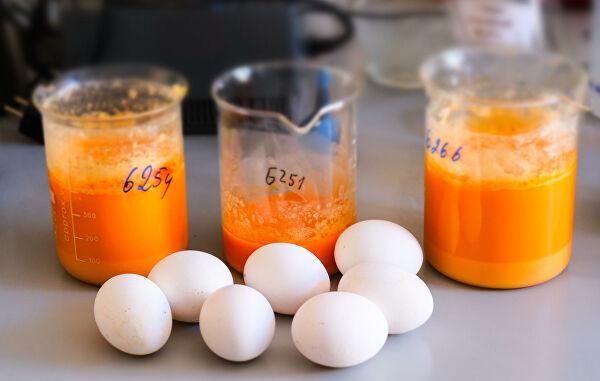 Химический анализ продуктов питания фото
