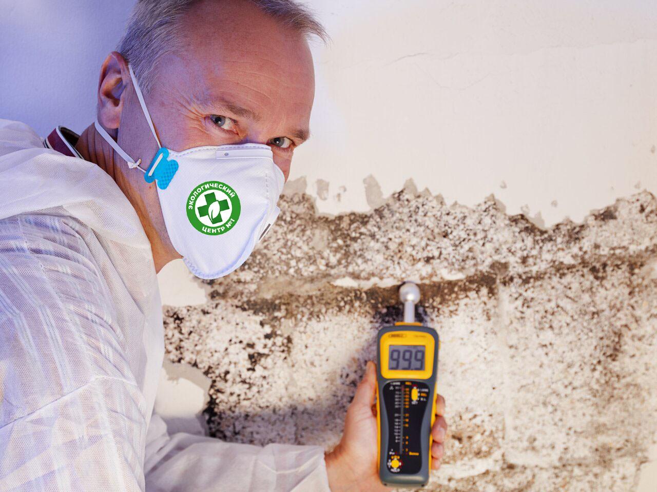 Когда требуется микробиологический анализ строительных материалов фото