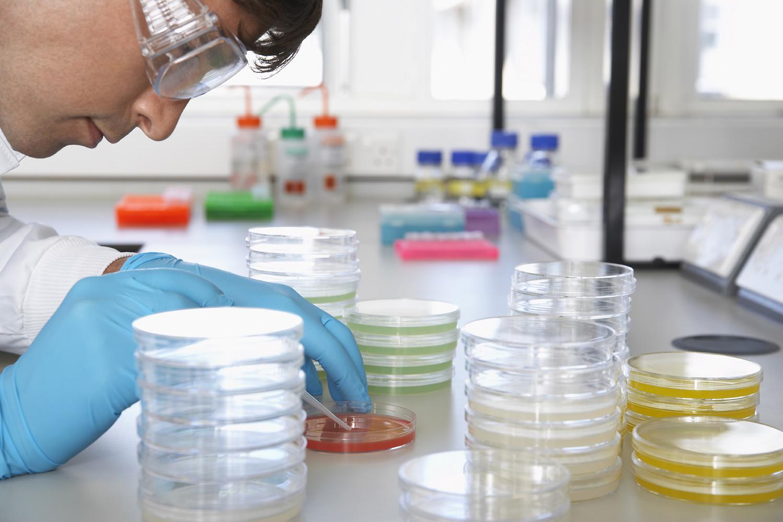 Когда требуется микробиологический анализ воздуха фото