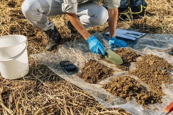 Особенности микробиологического анализа почвы (грунта, донных отложений) фото