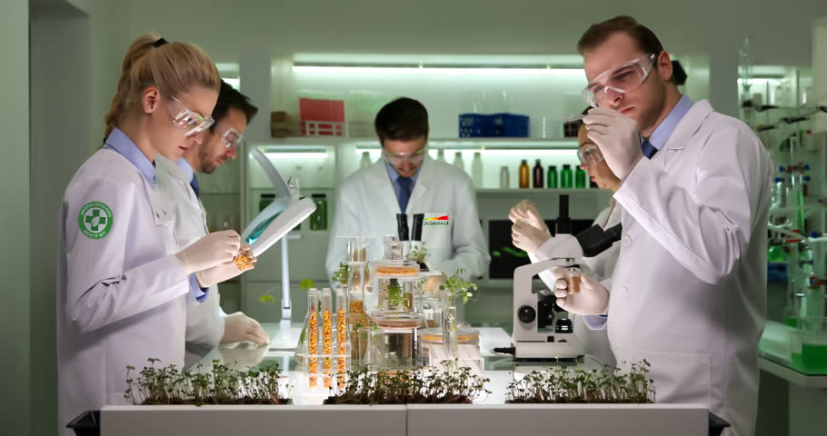 Специалисты Экологической клиникиКалинина ECOconnect фото